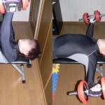 ダンベルフライ-大胸筋を鍛える-