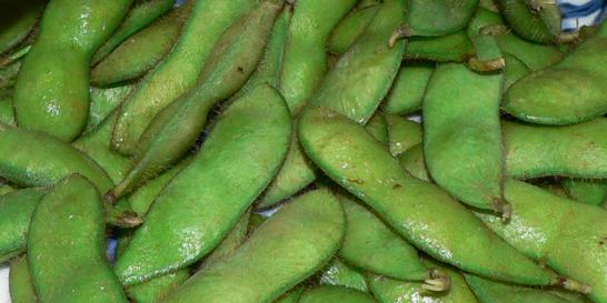 枝豆(えだまめ)